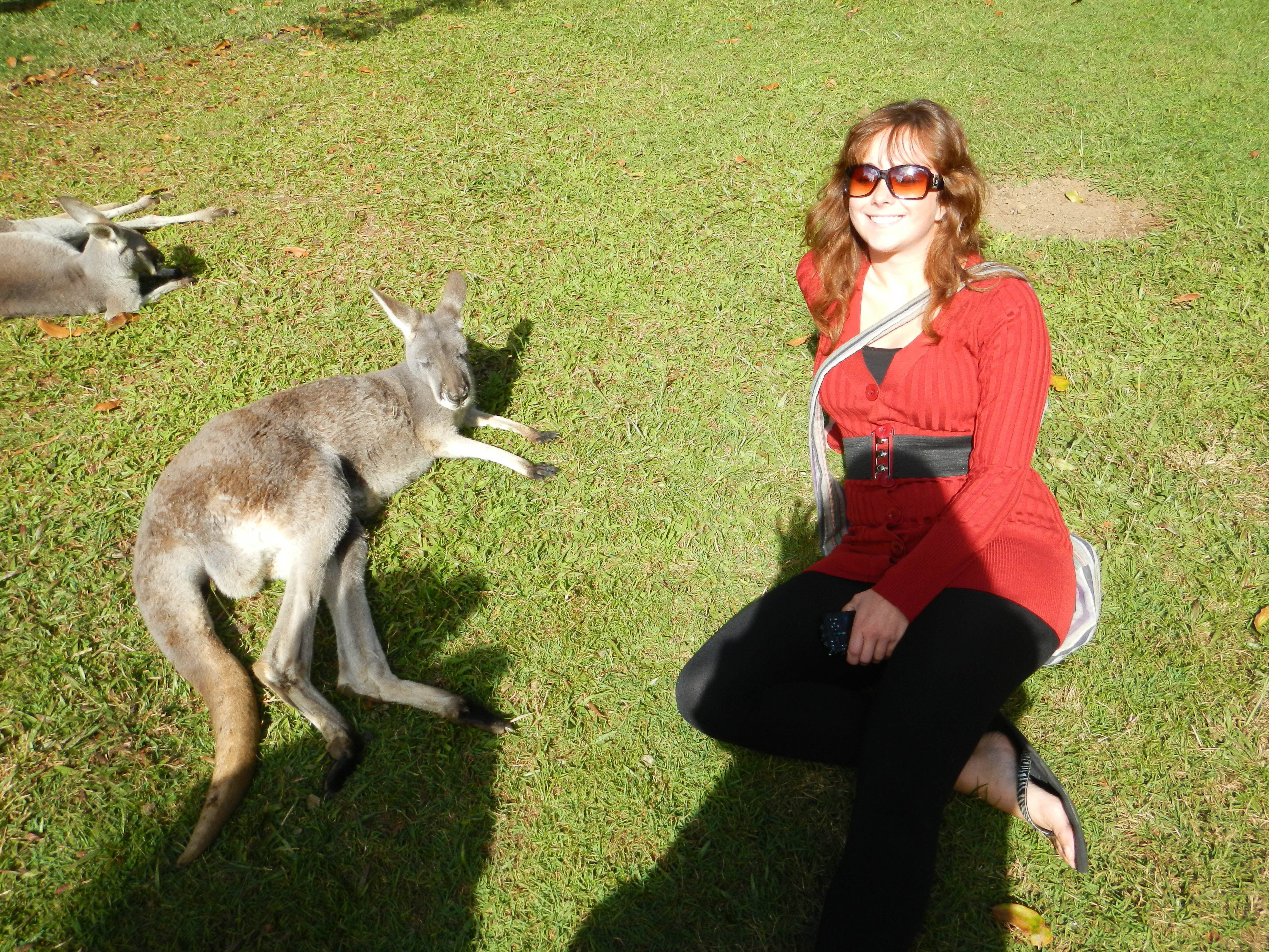 Sunbathing in a grass field with a kangaroo at the zoo